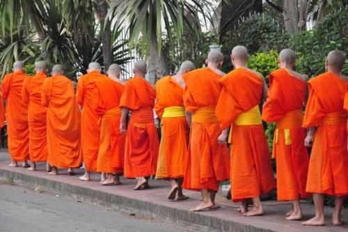 moines luang prabang_31.JPG