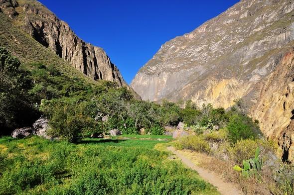 canyon colca 06.jpg