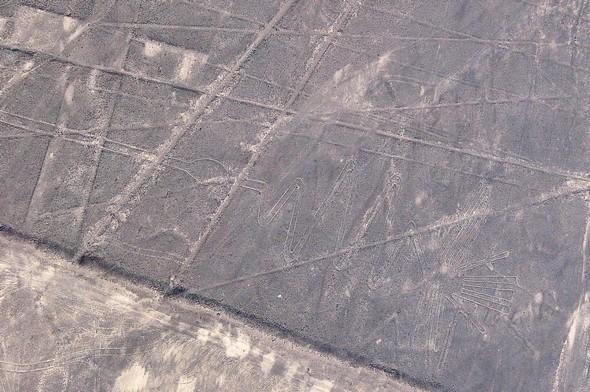 lignes de nazca 17.jpg