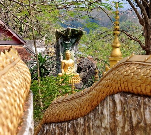 moines luang prabang_24.JPG