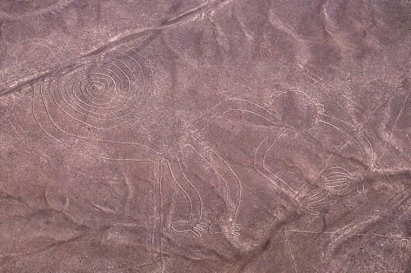 lignes de nazca 13.jpg