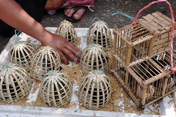 luang prabang market_13.JPG