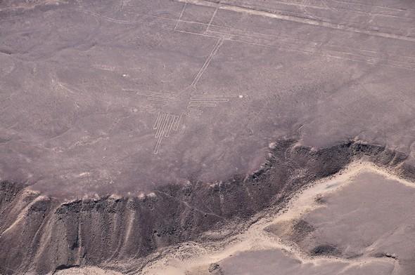 lignes de nazca 18.jpg