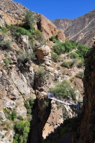 canyon de colca 06.jpg