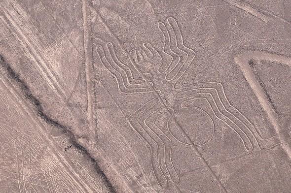 lignes de nazca 16.jpg
