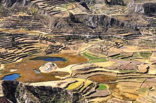 canyon de colca 02b.jpg