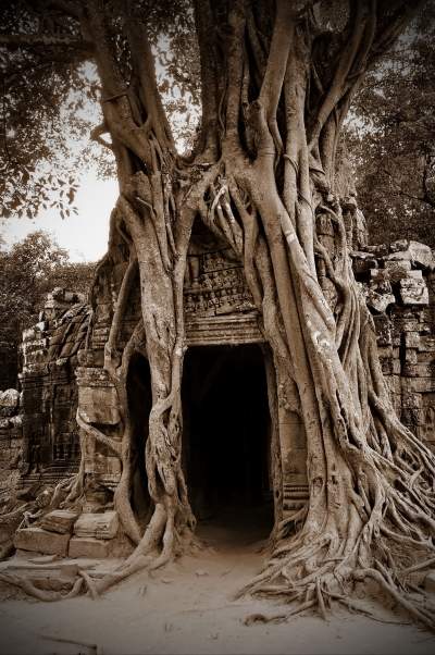angkor,sepia